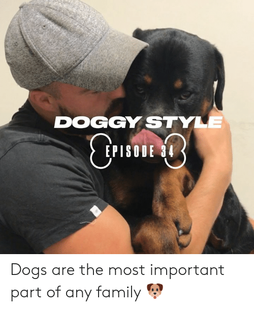 doggy style: DOGGY STYLE  CTIE  EPISODE 34 Dogs are the most important part of any family 🐶