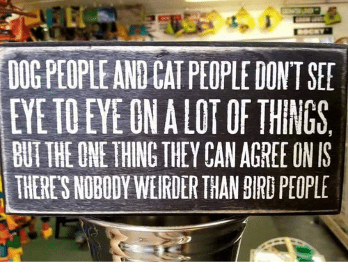 Memes, 🤖, and Cat: DOGPEOPLE AND CAT PEOPLE DONT SER  EYE TO EYE ONALOT OE THINGS  BUT THE ONE THING THEY CAN AGREE ON IS  THERE'S NOBODY WEIRDER THAN BIRD PEOPLE