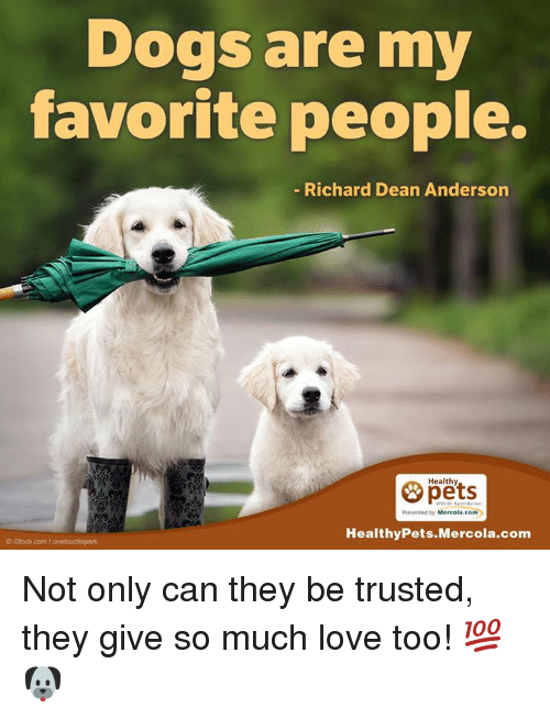 Memes, Istock, and 🤖: Dogs are my  favorite people.  Richard Dean Anderson  Healthy  Mercola.com  Healthy Pets Mercola.com  o istock com/onotouchspark Not only can they be trusted, they give so much love too! 💯🐶