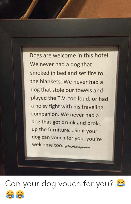 Too Loud: Dogs are welcome in this hotel.  We never had a dog that  smoked in bed and set fire to  the blankets. We never had a  dog that stole our towels and  played the T.V. too loud, or had  a noisy fight with his traveling  companion. We never had a  dog that got drunk and broke  up the furniture... .So if your  dog can vouch for you, you're  welcome too. dhe dtanagement Can your dog vouch for you? 😂😂😂