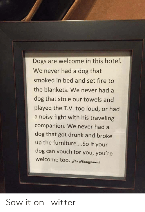 Too Loud: Dogs are welcome in this hotel.  We never had a dog that  smoked in bed and set fire to  the blankets. We never had a  dog that stole our towels and  played the T.V. too loud, or had  a noisy fight with his traveling  companion. We never had a  dog that got drunk and broke  up the furniture....So if your  dog can vouch for you, you're  welcome too. he dtanagement Saw it on Twitter