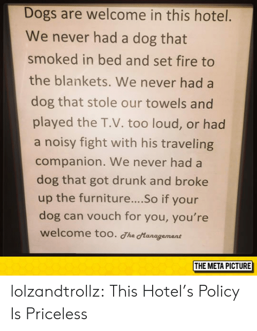 Too Loud: Dogs are welcome in this hotel.  We never had a dog that  smoked in bed and set fire to  the blankets. We never had a  dog that stole our towels and  played the T.V. too loud, or had  a noisy fight with his traveling  companion. We never had a  dog that got drunk and broke  up the furniture....So if your  dog can vouch for you, you're  welcome too. The Hanagement  THE META PICTURE lolzandtrollz:  This Hotel's Policy Is Priceless