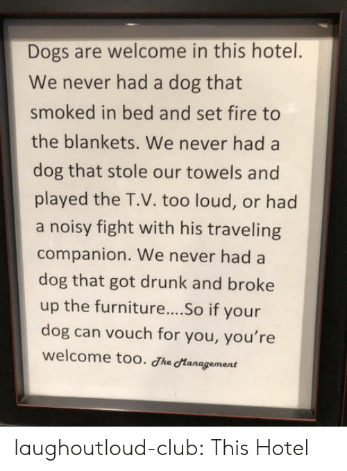 Too Loud: Dogs are welcome in this hotel.  We never had a dog that  smoked in bed and set fire to  the blankets. We never had a  dog that stole our towels and  played the T.V. too loud, or had  a noisy fight with his traveling  companion. We never had a  dog that got drunk and broke  up the furniture...So if your  dog can vouch for you, you're  welcome too. Jhe Management laughoutloud-club:  This Hotel