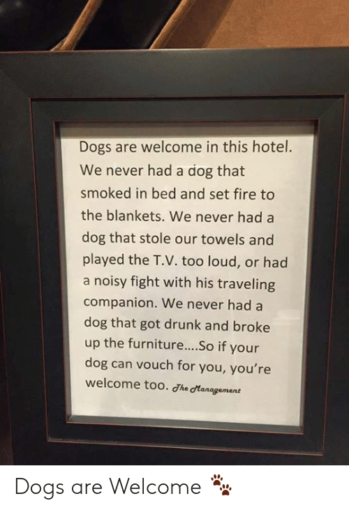 Too Loud: Dogs are welcome in this hotel.  We never had a dog that  smoked in bed and set fire to  the blankets. We never had a  dog that stole our towels and  played the T.V. too loud, or had  a noisy fight with his traveling  companion. We never had a  dog that got drunk and broke  up the furniture....So if your  dog can vouch for you, you're  welcome too. Jhe cManagement Dogs are Welcome 🐾
