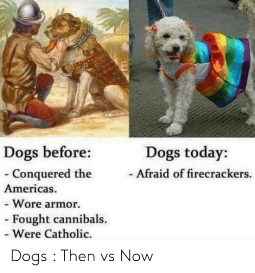 firecrackers: Dogs before:  - Conquered the  Americas.  - Wore armor.  Dogs today:  Afraid of firecrackers.  Fought cannibals.  - Were Catholic. Dogs : Then vs Now