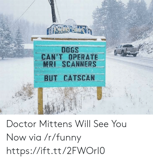 mri: DOGS  CAN'T OPERATE  MRI SCANNERS  BUT CATSCAN Doctor Mittens Will See You Now via /r/funny https://ift.tt/2FWOrI0