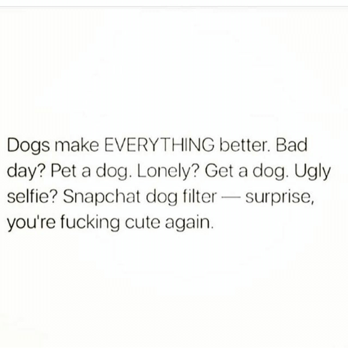 dog filter: Dogs make EVERYTHING better. Bad  day? Pet a dog. Lonely? Get a dog. Ugly  selfie? Snapchat dog filter Surprise  you're fucking cute again.