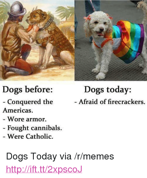 """firecrackers: Dogs today:  - Afraid of firecrackers.  Dogs before:  - Conquered the  Wore armor.  Were Catholic  Americas  Fought cannibals. <p>Dogs Today via /r/memes <a href=""""http://ift.tt/2xpscoJ"""">http://ift.tt/2xpscoJ</a></p>"""