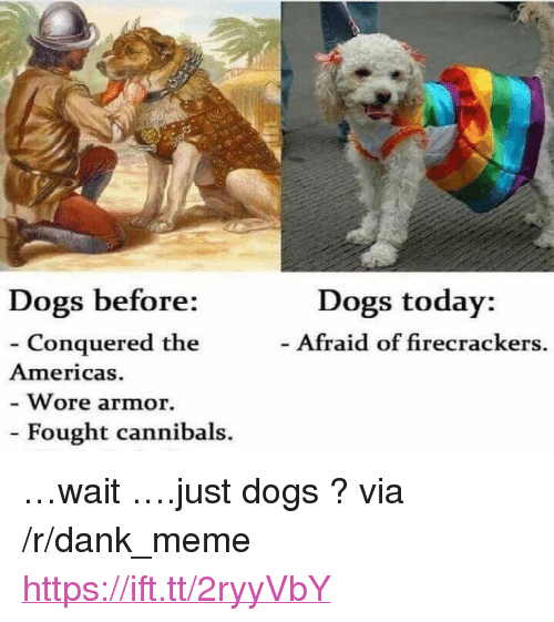 """firecrackers: Dogs today:  Afraid of firecrackers.  Dogs before:  - Conquered the  Americas.  Wore armor.  Fought cannibals. <p>&hellip;wait &hellip;.just dogs ? via /r/dank_meme <a href=""""https://ift.tt/2ryyVbY"""">https://ift.tt/2ryyVbY</a></p>"""