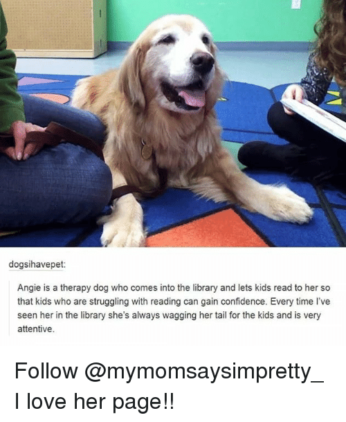 Confidence, Love, and Memes: dogsihavepet:  Angie is a therapy dog who comes into the library and lets kids read to her so  that kids who are struggling with reading can gain confidence. Every time l've  seen her in the library she's always wagging her tail for the kids and is very  attentive Follow @mymomsaysimpretty_ I love her page!!