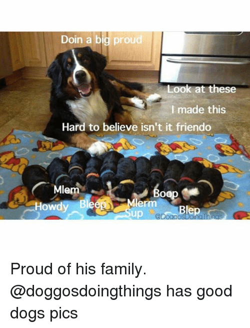 Friendo: Doin a big proud  Look at these  I made this  Hard to believe isn't it friendo  Mlem  Howdy Blee Mler  @Doad Proud of his family. @doggosdoingthings has good dogs pics