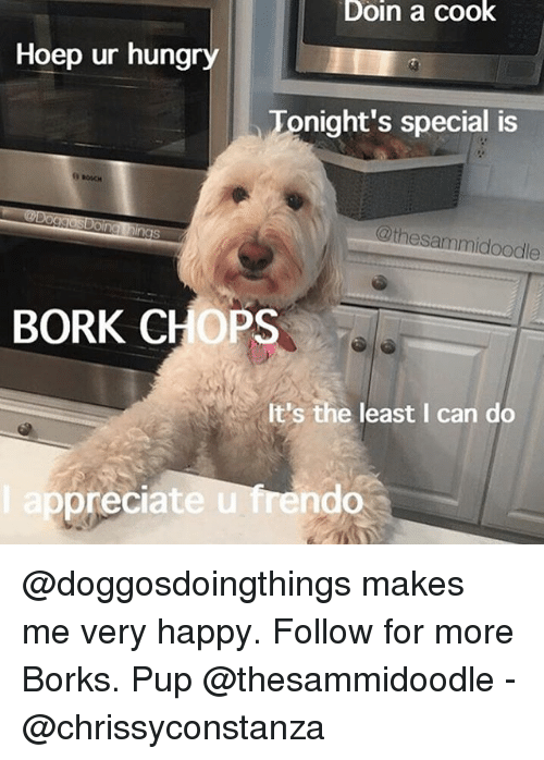 Børk: Doin a cook  Hoep ur hungry  Tonight's special is  @thesammidoodle  BORK CHOPS  It's the least I can do  ep  preciate u frendo @doggosdoingthings makes me very happy. Follow for more Borks. Pup @thesammidoodle - @chrissyconstanza