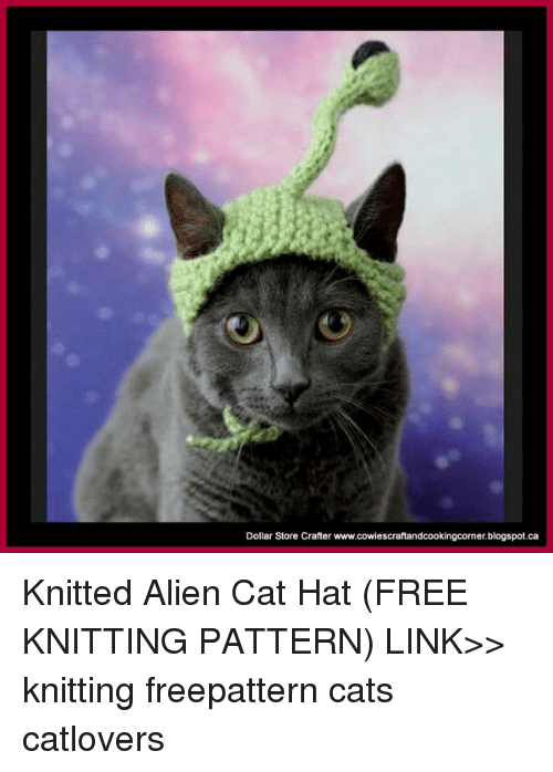 Cat Knitting Meme : Dollar store crafter