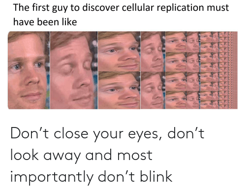close your eyes: Don't close your eyes, don't look away and most importantly don't blink