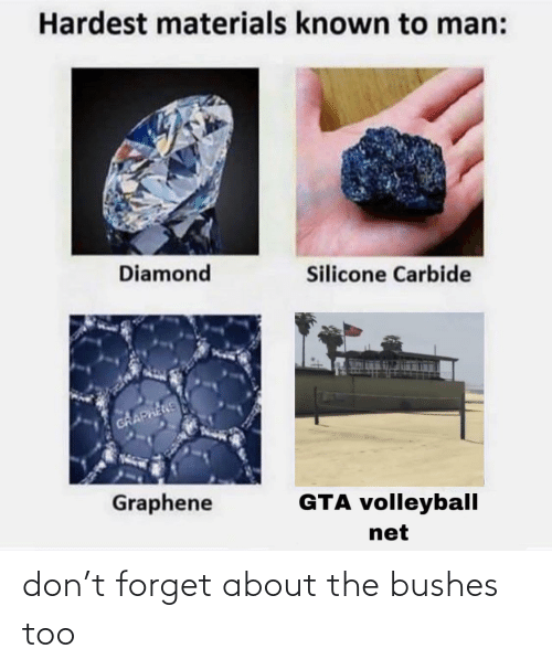 bushes: don't forget about the bushes too