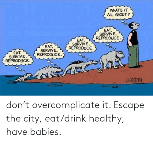 City, Don, and Babies: don't overcomplicate it. Escape the city, eat/drink healthy, have babies.