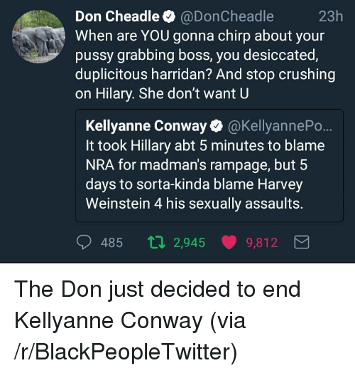 Kellyanne: Don Cheadle @DonCheadle  When are YOU gonna chirp about your  pussy grabbing boss, you desiccated,  duplicitous harridan? And stop crushing  on Hilary. She don't want U  23h  Kellyanne Conway @KellyannePo..  It took Hillary abt 5 minutes to blame  NRA for madman's rampage, but 5  days to sorta-kinda blame Harvey  Weinstein 4 his sexually assaults.  485 ti 2,945 9,812 <p>The Don just decided to end Kellyanne Conway (via /r/BlackPeopleTwitter)</p>