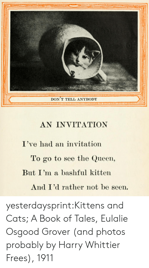 frees: DON T TELL ANYBODY  AN INVITATION  I've had an invitation  To go to see the Queen,  But I'm a bashful kitten  And I'd rather not be seen. yesterdaysprint:Kittens and Cats; A Book of Tales, Eulalie Osgood Grover (and photos probably by Harry Whittier Frees), 1911