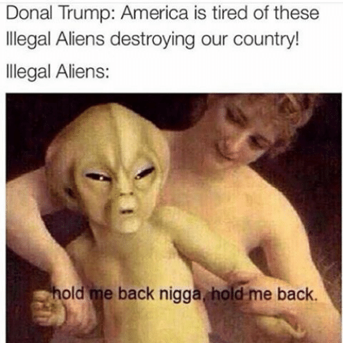 Donal: Donal Trump: America is tired of these  llegal Aliens destroying our country!  llegal Aliens:  old me back nigga hold-me back.