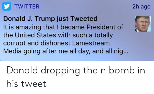 donald: Donald dropping the n bomb in his tweet
