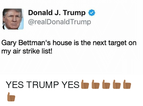 Memes, Target, and House: Donald J. Trump  arealDonald Trump  Gary Bettman's house is the next target on  my air strike list! YES TRUMP YES👍🏾👍🏾👍🏾👍🏾👍🏾👍🏾