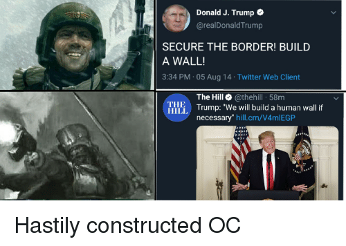 "Build A Wall: Donald J. Trump  @realDonald Trump  SECURE THE BORDER! BUILD  A WALL!  3:34 PM 05 Aug 14 Twitter Web Client  The Hill @thehill 58m  Illi Trump: ""We will build a human wall f  THE  HILL  necessary"" hill.cm/V4mlEGP Hastily constructed OC"