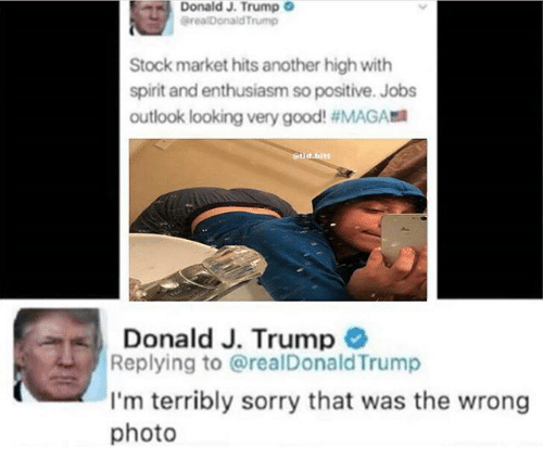 Memes, Sorry, and Good: Donald J. Trump  @realDonald Trump  Stock market hits another high with  spirit and enthusiasm so positive. Jobs  outlook looking very good! #MAGA  tid.bitt  Donald J. Trump  Replying to @realDonald Trump  I'm terribly sorry that was the wrong  photo
