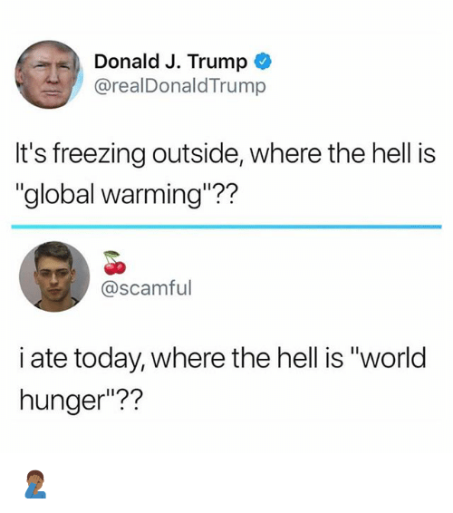 "Global Warming, Memes, and Today: Donald J. Trump *  @realDonaldTrump  It's freezing outside, where the hell is  ""global warming""??  @scamful  i ate today, where the hell is ""world  hunger""?? 🤦🏾‍♂️"