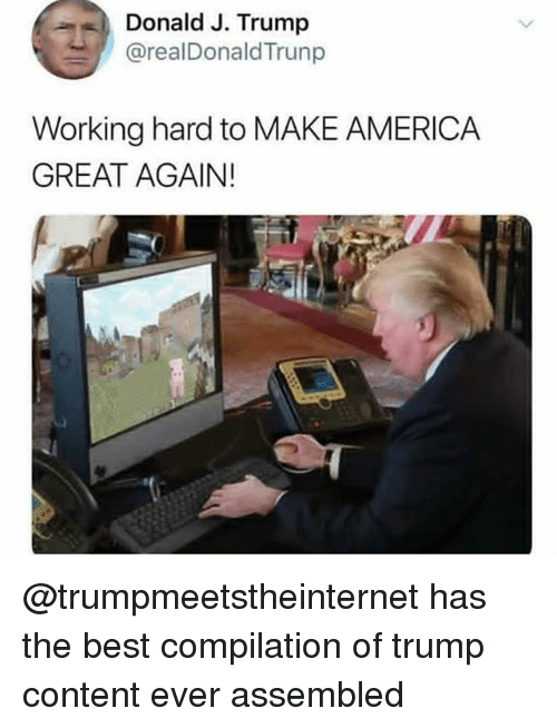America, Memes, and Best: Donald J. Trump  @realDonaldTrunp  Working hard to MAKE AMERICA  GREAT AGAIN! @trumpmeetstheinternet has the best compilation of trump content ever assembled