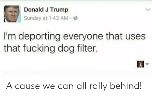 dog filter: Donald J Trump  Sunday at 1:43 AM e  I'm deporting everyone that uses  that fucking dog filter. A cause we can all rally behind!