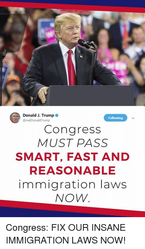 Immigration, Congress, and Smart: Donald J. Trumpe  realDonaldTrump  Congress  MUST PASS  SMART, FAST AND  REASONABLE  immigration laws  NOW. Congress: FIX OUR INSANE IMMIGRATION LAWS NOW!