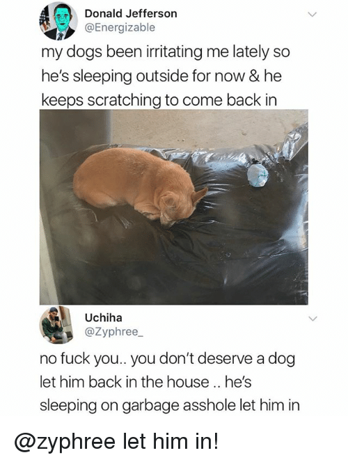 Dogs, Fuck You, and Memes: Donald Jefferson  @Energizable  my dogs been irritating me lately so  he's sleeping outside for now & he  keeps scratching to come back in  Uchiha  @Zyphree  no fuck you.. you don't deserve a dog  let him back in the house.. he's  sleeping on garbage asshole let him in @zyphree let him in!