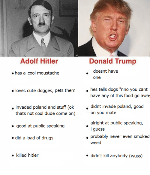 Donald Trump Adolf Hitler Doesnt Have Has A Cool Moustache 1327949