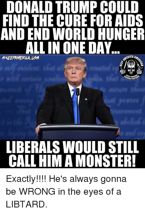 end-world-hunger: DONALD TRUMP COULD  FIND THE CURE FOR AIDS  AND END WORLD HUNGER  ALL IN ONE DAY  SUPERIOR  REPO  LIBERALSWOULD STILL  CALL HIM A MONSTER! Exactly!!!! He's always gonna be WRONG in the eyes of a LIBTARD.