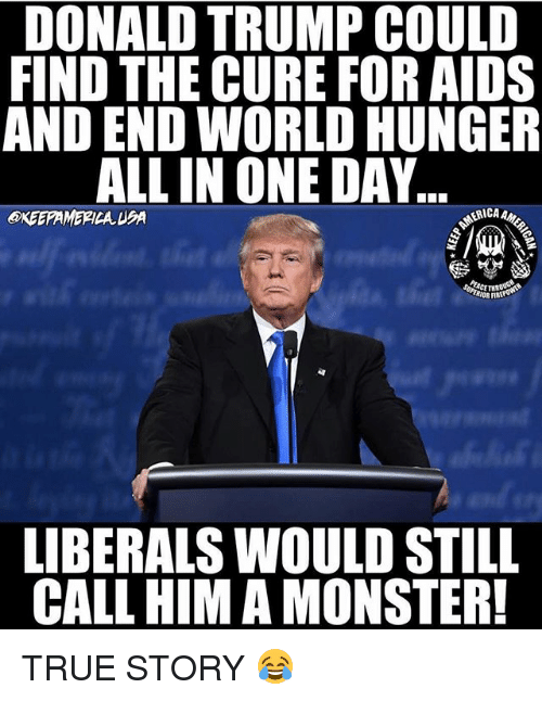 end-world-hunger: DONALD TRUMP COULD  FIND THE CURE FOR AIDS  AND END WORLD HUNGER  ALL IN ONE DAY  OKEEPAMERICA UA  ERICA  LIBERALS WOULD STILL  CALL HIM A MONSTER! TRUE STORY 😂