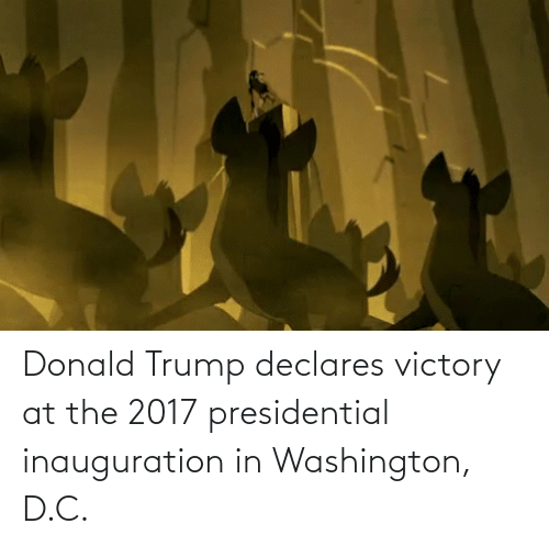 presidential inauguration: Donald Trump declares victory at the 2017 presidential inauguration in Washington, D.C.