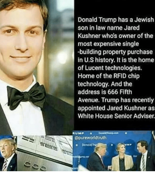 Trump Is Not Above The Law Home: Donald Trump Has A Jewish Son In Law Name Jared Kushner