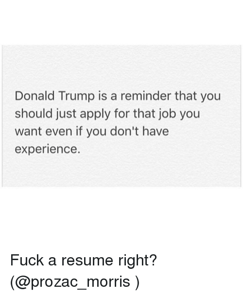resume and you don t really want to cover the same ground twice pinterest - Donald Trump Resume