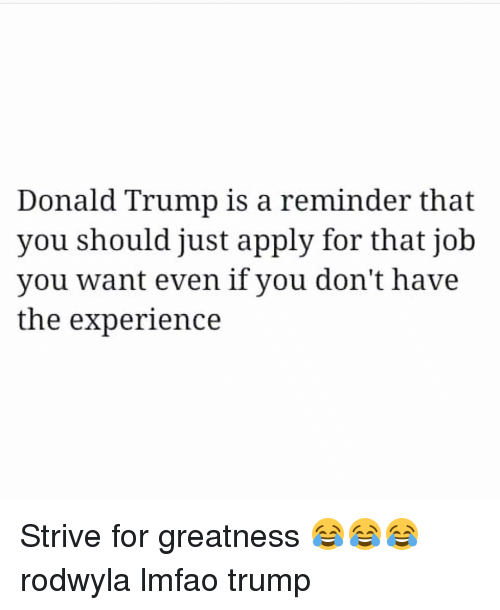 Donald Trump, Funny, and Jobs: Donald Trump is a reminder that  you should just apply for that job  you want even if you don't have  the experience Strive for greatness 😂😂😂 rodwyla lmfao trump