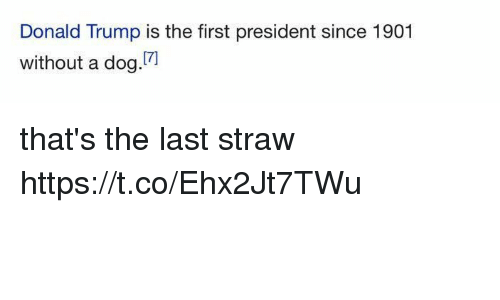 Donald Trump, Trump, and Girl Memes: Donald Trump is the first president since 1901  without a dog.7  17) that's the last straw https://t.co/Ehx2Jt7TWu