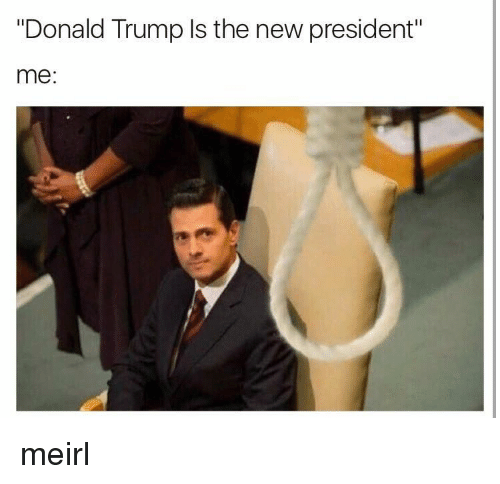 "Donald Trump, Presidents, and Trump: ""Donald Trump Is the new president""  me meirl"