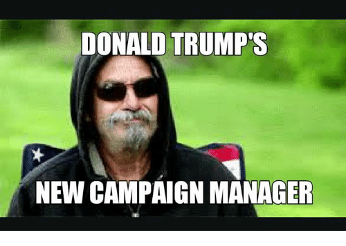 Donald Trump, Memes, and Trump: DONALD TRUMP  NEW CAMPAIGN MANAGER