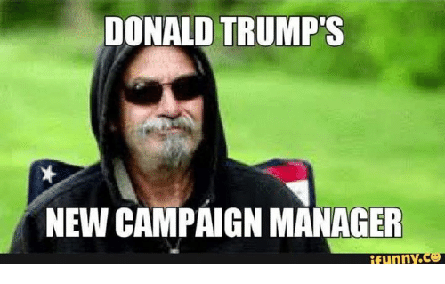 Donald Trump, Funny, and Memes: DONALD TRUMP  NEW CAMPAIGN MANAGER  funny