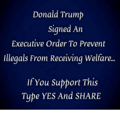 Donald Trump, Memes, and Trump: Donald Trump  Signed An  Executive Order To Prevent  Illegals From Receiving Welfare..  If You Support This  Type YES And SHARE