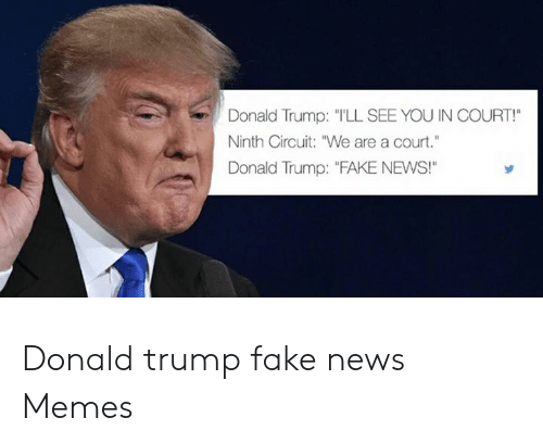 """Donald Trump Fake: Donald Trump: TLL SEE YOU IN COURT!  Ninth Circuit: """"We are a court.""""  Donald Trump: """"FAKE NEWS! Donald trump fake news Memes"""