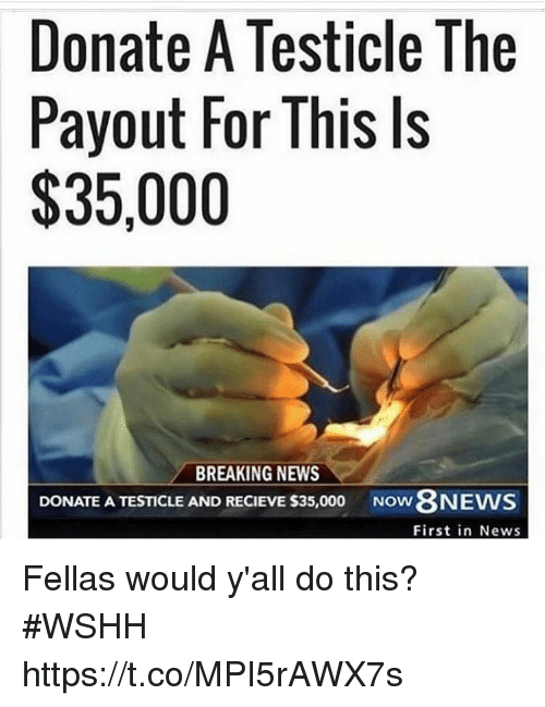 Recieve: Donate A Testicle The  Payout For This Is  $35,000  BREAKING NEWS  DONATE A TESTICLE AND RECIEVE S35,000  Now8NEWS  First in News Fellas would y'all do this? #WSHH https://t.co/MPI5rAWX7s