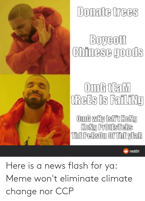 Meme, News, and Omg: Donate trees  Boycott  Chinese goods  OmG TEaM  TREES Is FailINg  OmG wHy IsNt HoNg  KONG ProtESTeRs  ThE PeRsOn Of ThE yEaR  O reddit Here is a news flash for ya: Meme won't eliminate climate change nor CCP