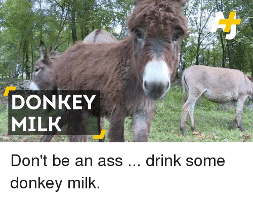 Donkey, Memes, and 🤖: DONKEY  MILK Don't be an ass ... drink some donkey milk.