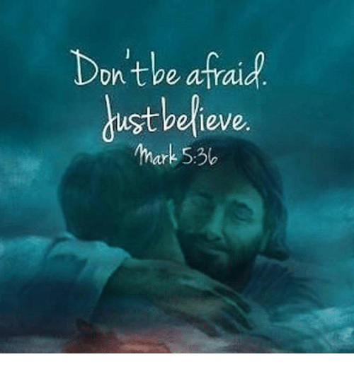 Memes, 🤖, and Believe: Don't be afraid  dust believe.  ar  5:3b