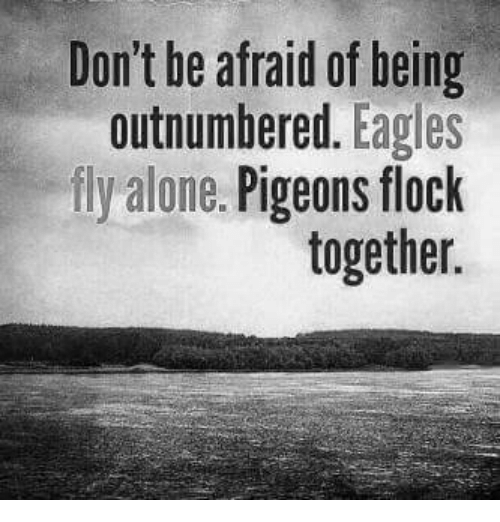 Don't Be Afraid Of Being Outnumbered Eagles Fly Alone